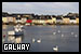 City: Galway