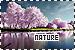 Nature: Nature